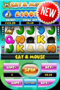 Play Cat and Mouse slot game.